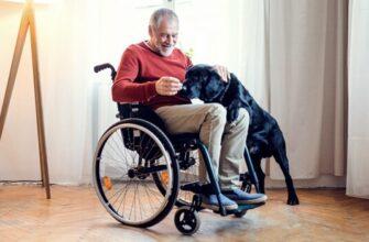 Engelliler Nasıl Emekli Olur
